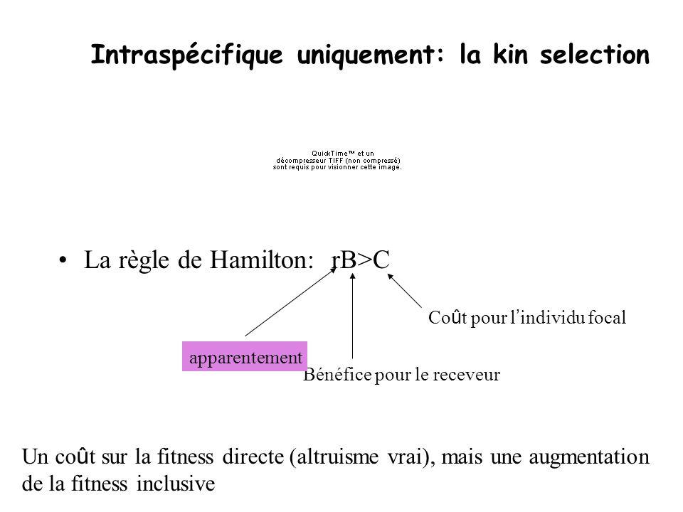 Intraspécifique uniquement: la kin selection La règle de Hamilton:rB>C Co û t pour l individu focal Bénéfice pour le receveur apparentement Un co û t
