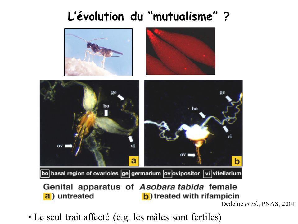 Dedeine et al., PNAS, 2001 Lévolution du mutualisme ? Le seul trait affecté (e.g. les mâles sont fertiles)