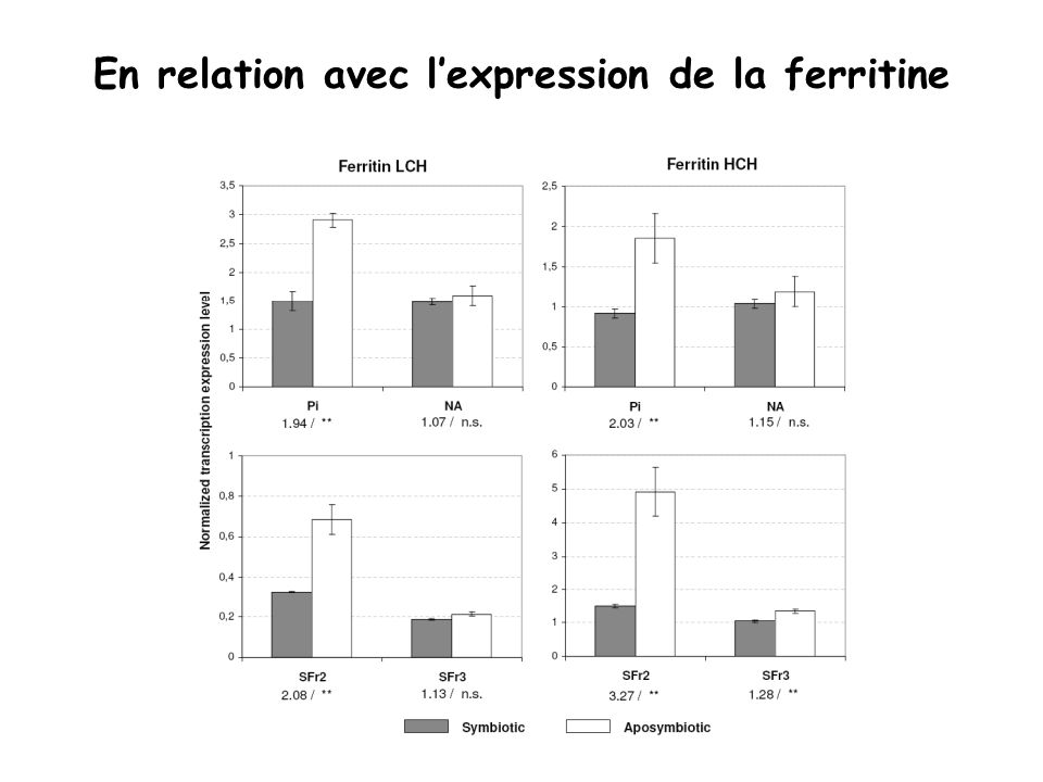 En relation avec lexpression de la ferritine