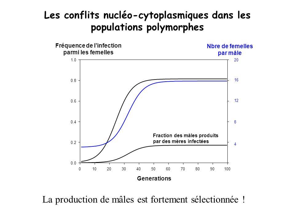 Generations 0102030405060708090100 Fréquence de linfection parmi les femelles 0.0 0.2 0.4 0.6 0.8 1.0 20 12 8 4 16 Nbre de femelles par mâle Fraction