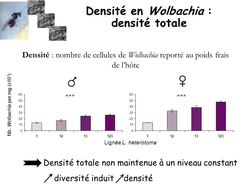 Densité en Wolbachia : densité totale Densité : nombre de cellules de Wolbachia reporté au poids frais de lhôte 0 10 20 30 40 50 60 11213123 Nb. Wolba