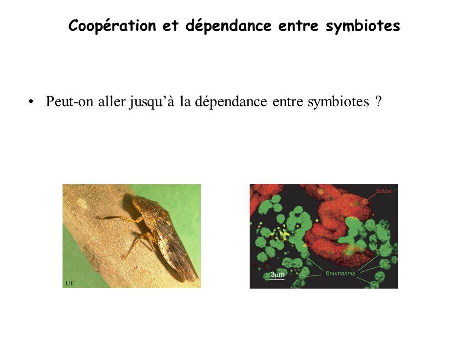 Coopération et dépendance entre symbiotes Peut-on aller jusquà la dépendance entre symbiotes ?