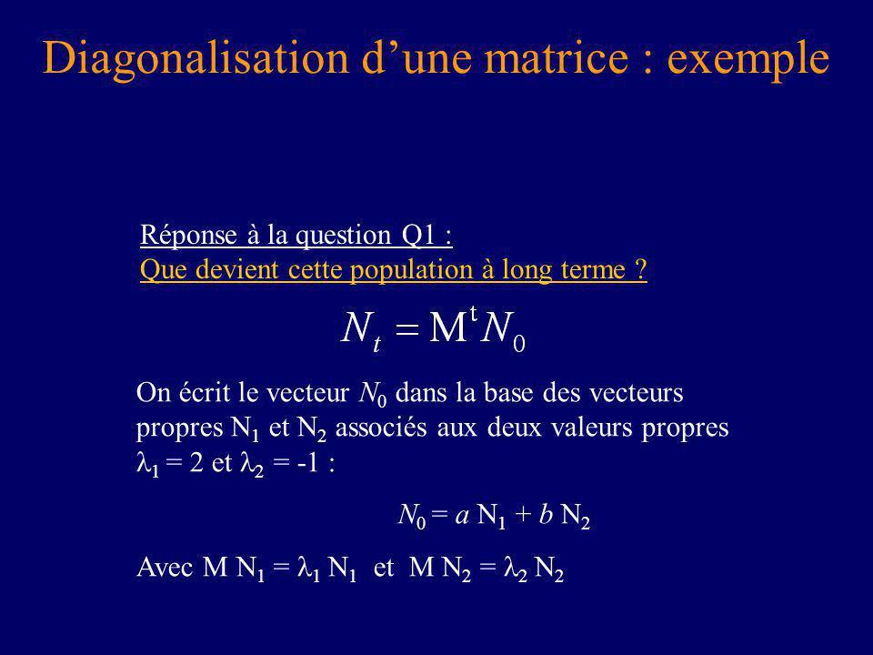 Diagonalisation dune matrice : exemple Réponse à la question Q1 : Que devient cette population à long terme .