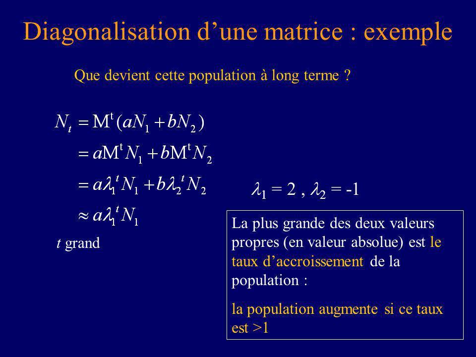 Diagonalisation dune matrice : exemple Que devient cette population à long terme .