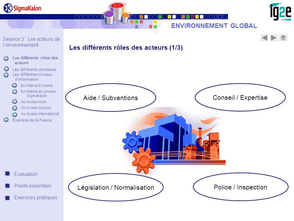 ENVIRONNEMENT GLOBAL Séance 3 : Les acteurs de lenvironnement Les différents rôles des acteurs Les différents domaines Les différents niveaux dinforma