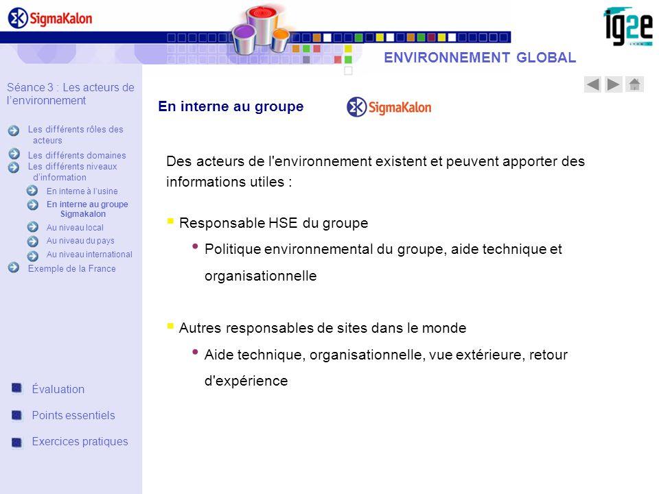 ENVIRONNEMENT GLOBAL Des acteurs de l'environnement existent et peuvent apporter des informations utiles : Responsable HSE du groupe Politique environ