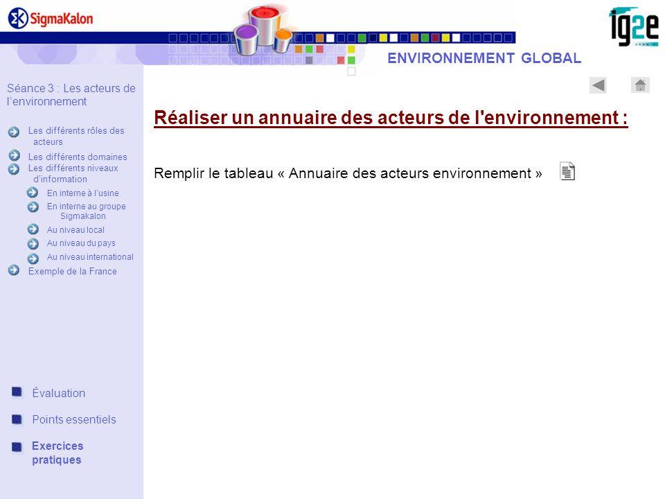 Réaliser un annuaire des acteurs de l'environnement : Remplir le tableau « Annuaire des acteurs environnement » ENVIRONNEMENT GLOBAL Séance 3 : Les ac