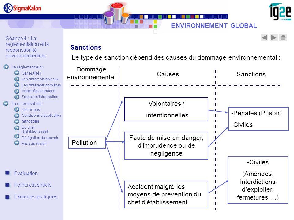ENVIRONNEMENT GLOBAL Sanctions Volontaires / intentionnelles Faute de mise en danger, d'imprudence ou de négligence Accident malgré les moyens de prév