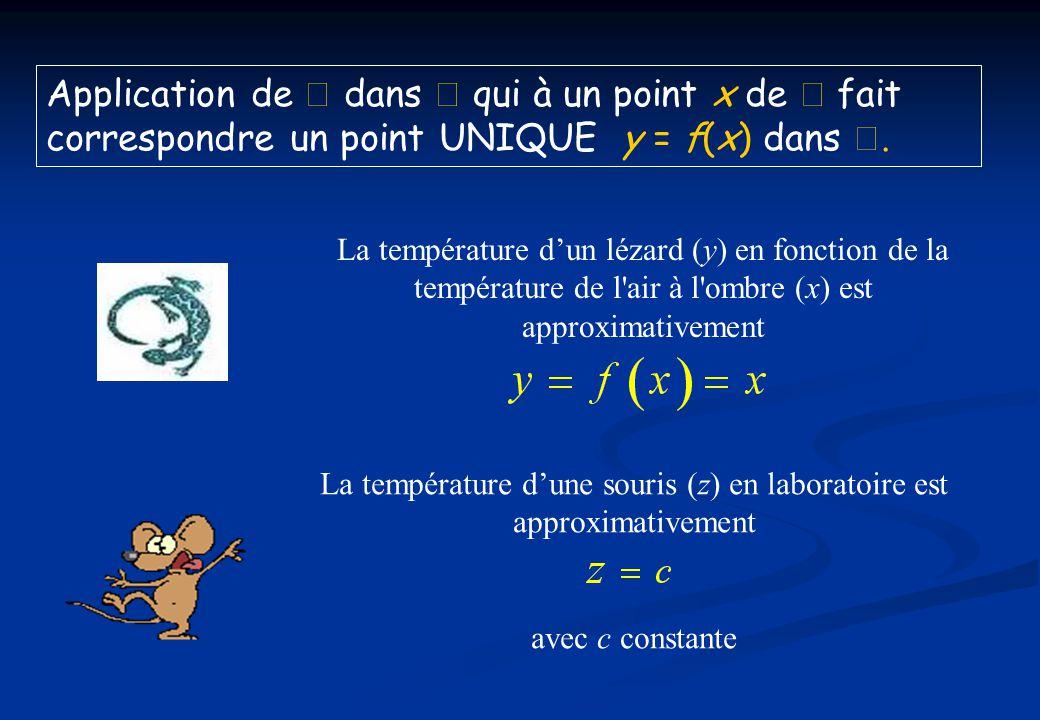 La température dune souris (z) en laboratoire est approximativement avec c constante La température dun lézard (y) en fonction de la température de l'