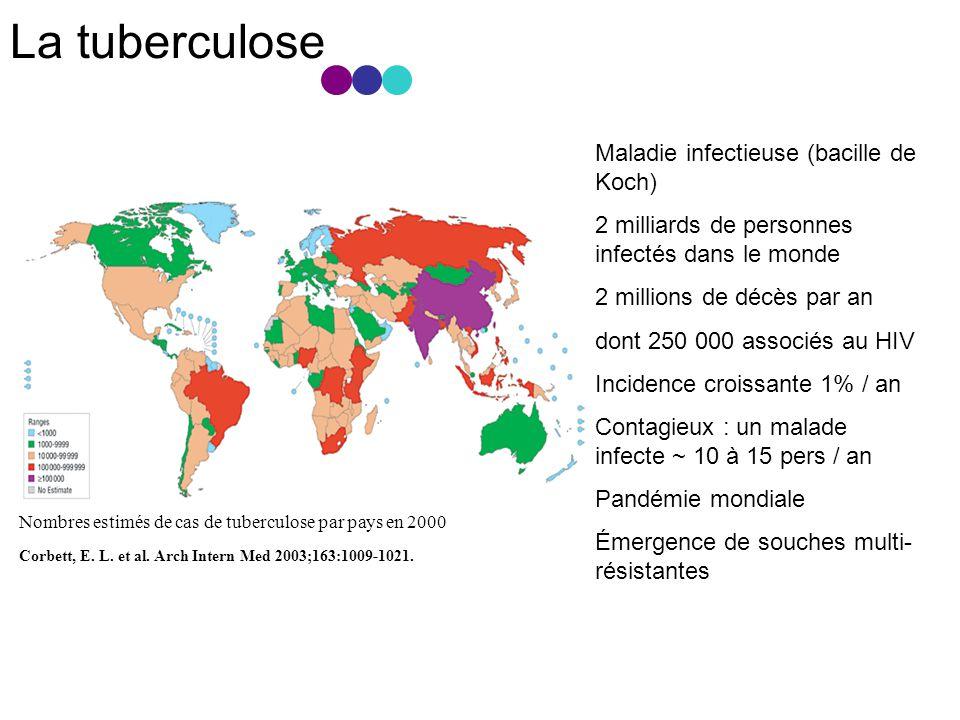 La tuberculose Corbett, E.L. et al. Arch Intern Med 2003;163:1009-1021.