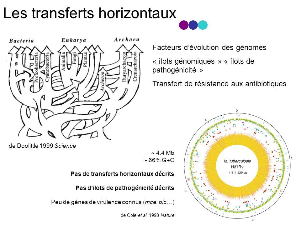 Les transferts horizontaux ~ 4.4 Mb ~ 66% G+C Pas de transferts horizontaux décrits Pas dîlots de pathogénicité décrits Peu de gènes de virulence connus (mce, plc…) de Cole et al.