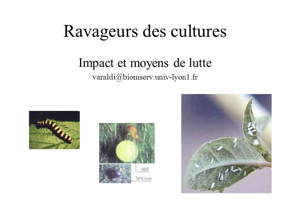 Ravageurs des cultures Impact et moyens de lutte varaldi@biomserv.univ-lyon1.fr