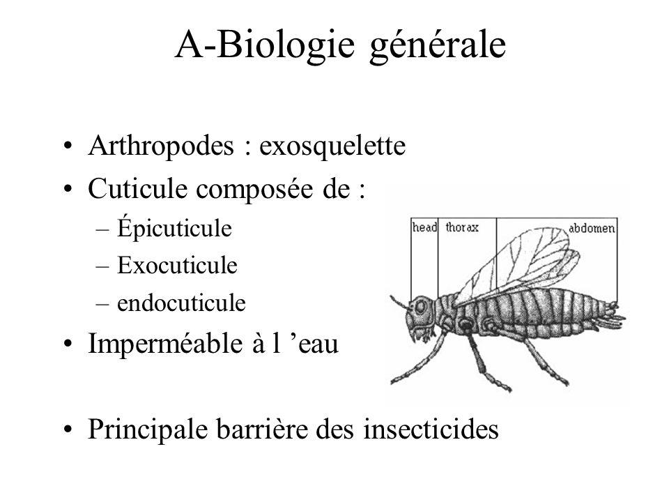 A-Biologie générale Arthropodes : exosquelette Cuticule composée de : –Épicuticule –Exocuticule –endocuticule Imperméable à l eau Principale barrière