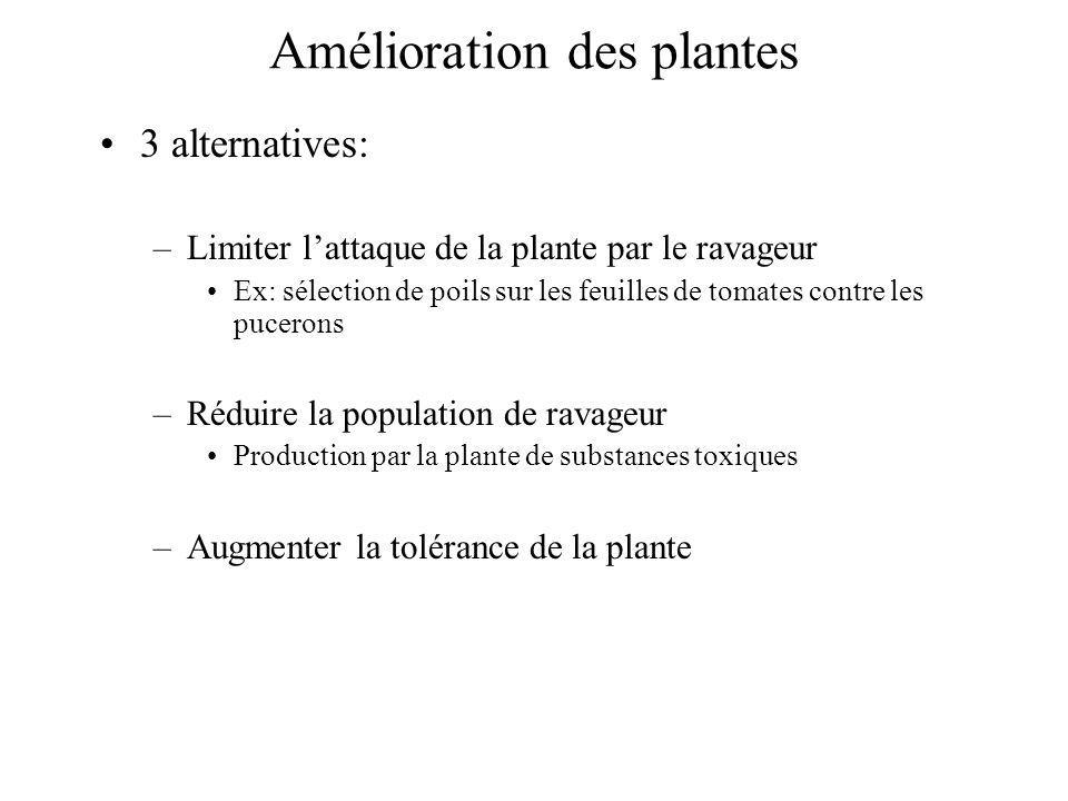 Amélioration des plantes 3 alternatives: –Limiter lattaque de la plante par le ravageur Ex: sélection de poils sur les feuilles de tomates contre les