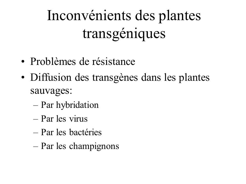 Inconvénients des plantes transgéniques Problèmes de résistance Diffusion des transgènes dans les plantes sauvages: –Par hybridation –Par les virus –P