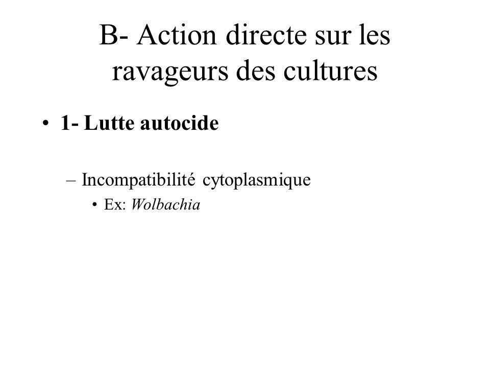 B- Action directe sur les ravageurs des cultures 1- Lutte autocide –Incompatibilité cytoplasmique Ex: Wolbachia