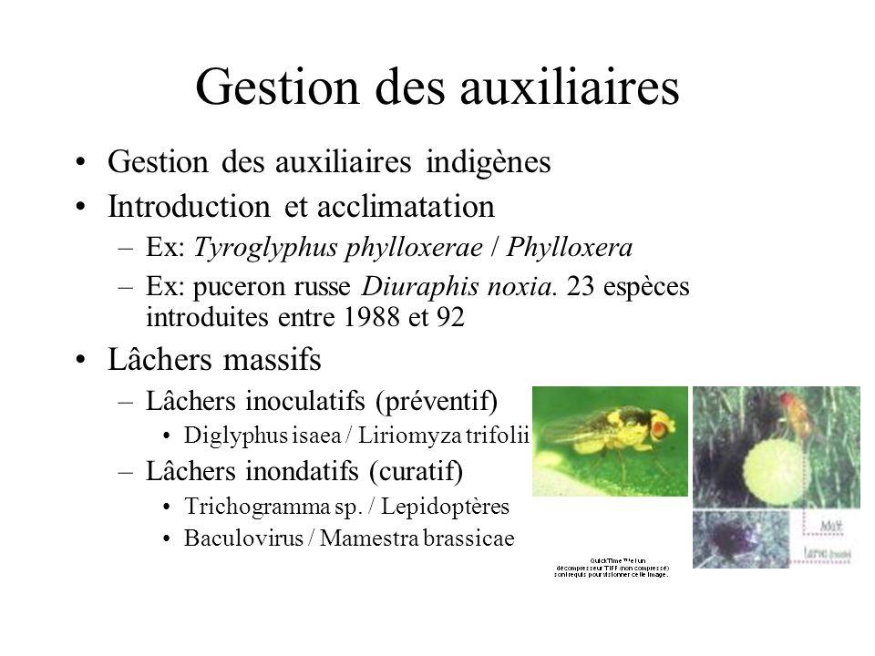 Gestion des auxiliaires Gestion des auxiliaires indigènes Introduction et acclimatation –Ex: Tyroglyphus phylloxerae / Phylloxera –Ex: puceron russe D