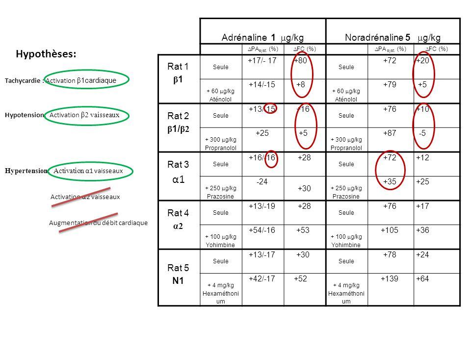 Adrénaline 1 g/kgNoradrénaline 5 g/kg PA syst. (%) FC (%) PA syst.
