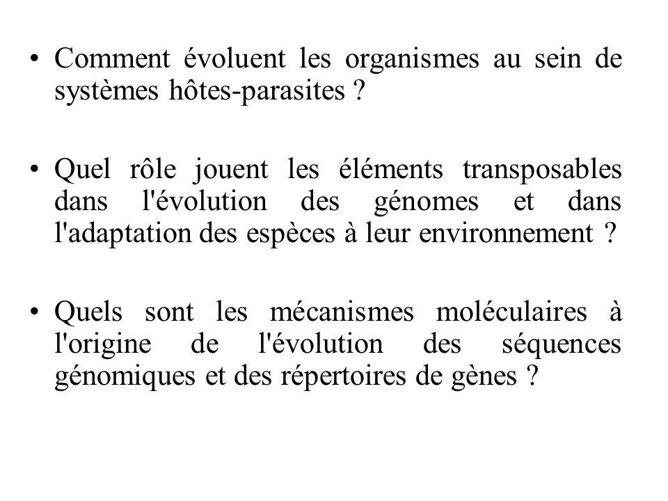 Comment évoluent les organismes au sein de systèmes hôtes-parasites ? Quel rôle jouent les éléments transposables dans l'évolution des génomes et dans