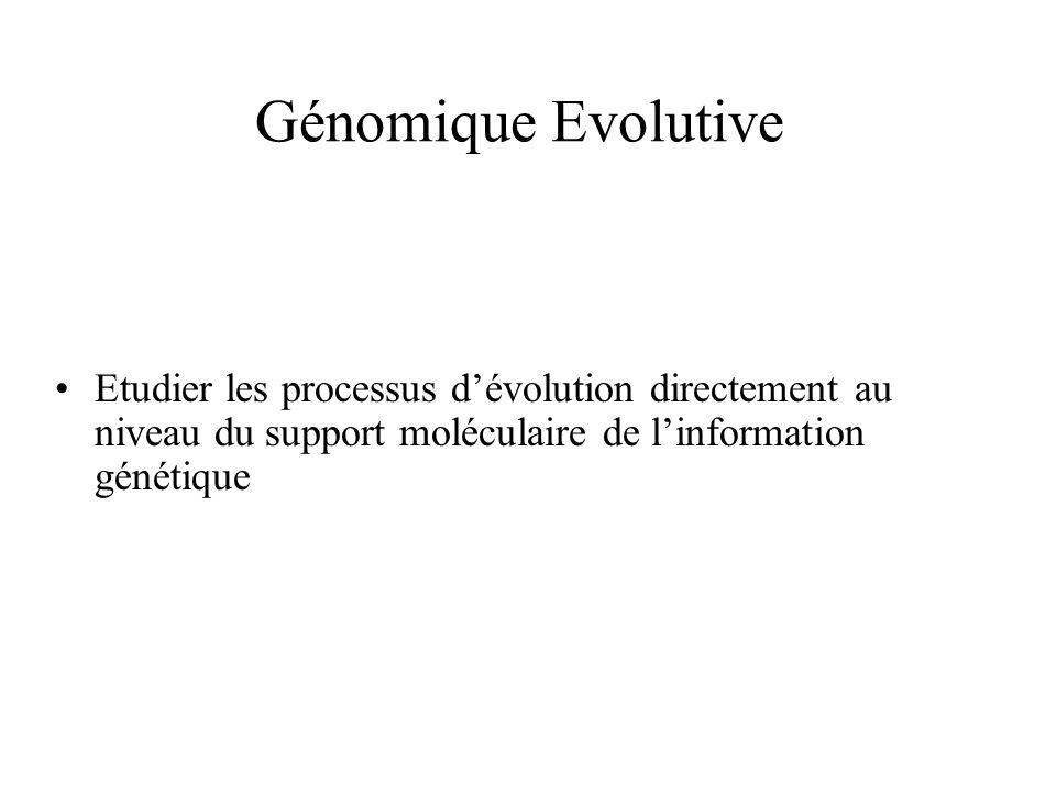 Génomique Evolutive Etudier les processus dévolution directement au niveau du support moléculaire de linformation génétique
