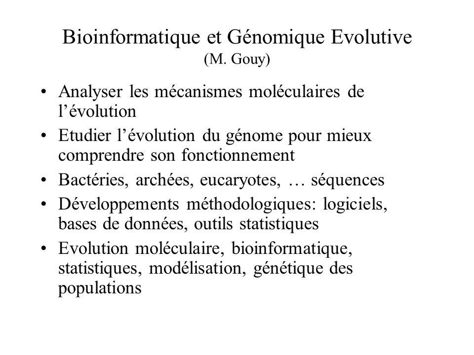 Bioinformatique et Génomique Evolutive (M. Gouy) Analyser les mécanismes moléculaires de lévolution Etudier lévolution du génome pour mieux comprendre