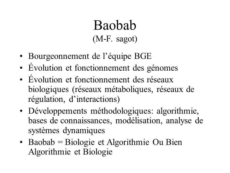 Baobab (M-F. sagot) Bourgeonnement de léquipe BGE Évolution et fonctionnement des génomes Évolution et fonctionnement des réseaux biologiques (réseaux