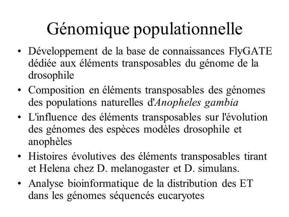 Génomique populationnelle Développement de la base de connaissances FlyGATE dédiée aux éléments transposables du génome de la drosophile Composition e