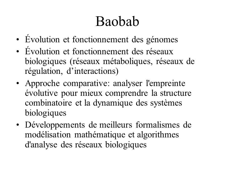 Baobab Évolution et fonctionnement des génomes Évolution et fonctionnement des réseaux biologiques (réseaux métaboliques, réseaux de régulation, dinte