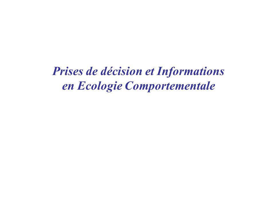 Prises de décision et Informations en Ecologie Comportementale