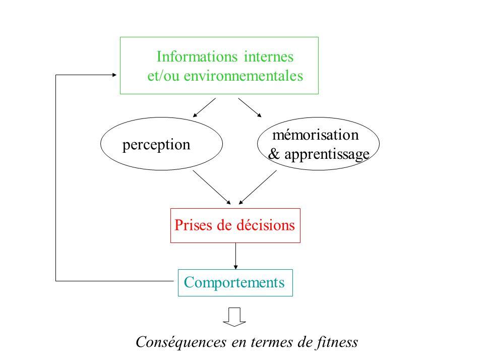 Informations internes et/ou environnementales Prises de décisions perception mémorisation & apprentissage Comportements Conséquences en termes de fitness