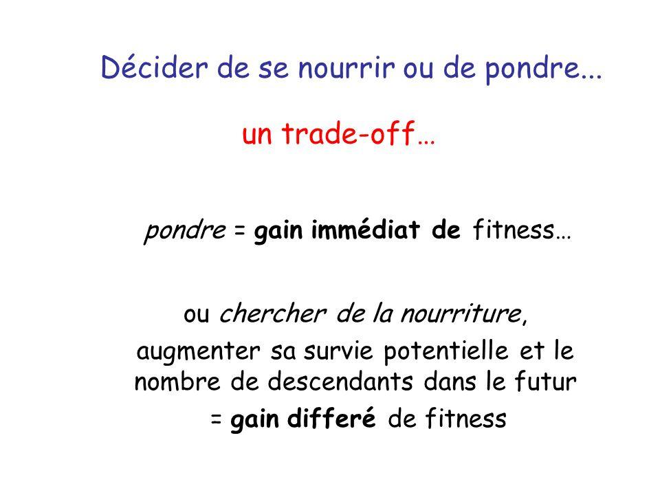 Décider de se nourrir ou de pondre... pondre = gain immédiat de fitness… un trade-off… ou chercher de la nourriture, augmenter sa survie potentielle e