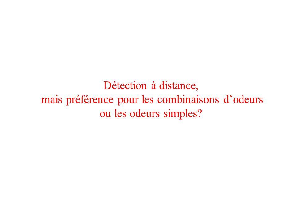 Détection à distance, mais préférence pour les combinaisons dodeurs ou les odeurs simples