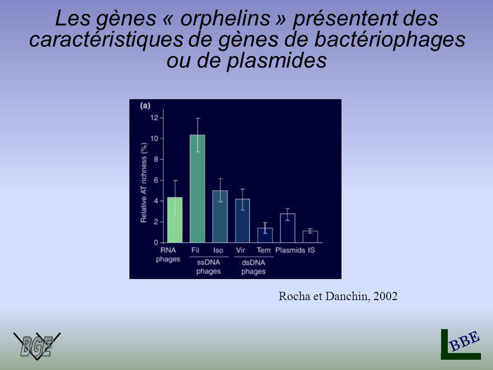 BBE Les gènes « orphelins » présentent des caractéristiques de gènes de bactériophages ou de plasmides Rocha et Danchin, 2002