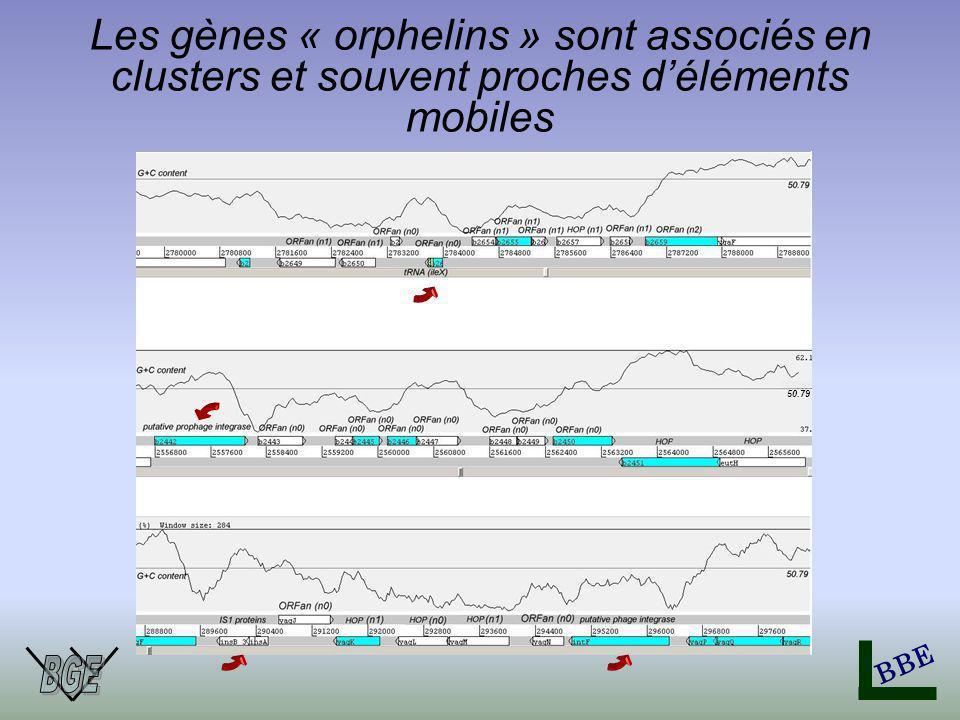 BBE Les gènes « orphelins » sont associés en clusters et souvent proches déléments mobiles 50.79