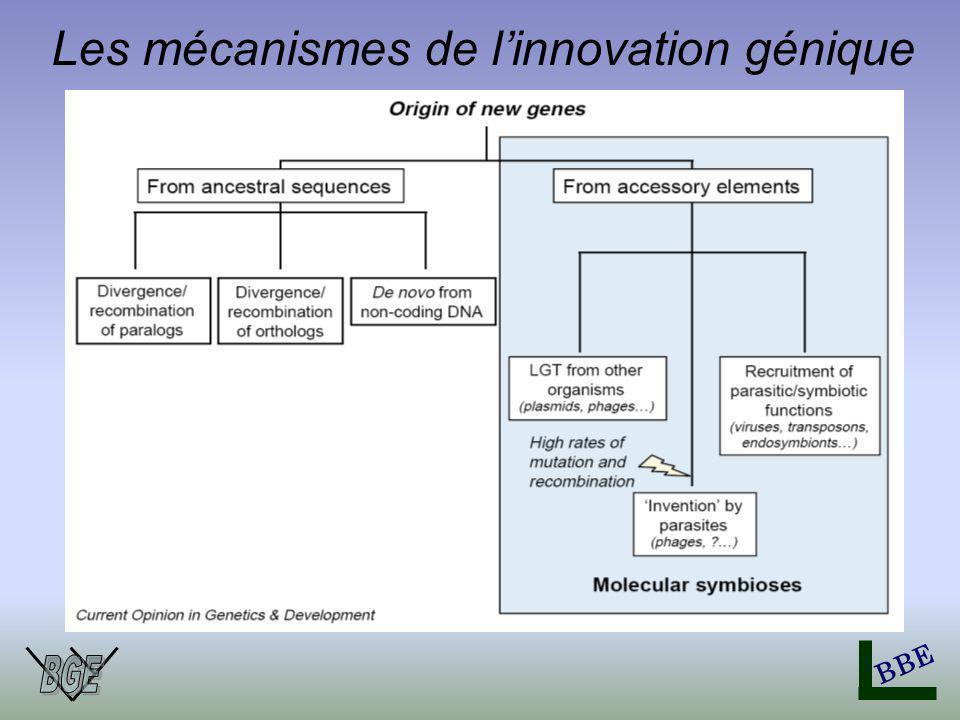 BBE Les mécanismes de linnovation génique