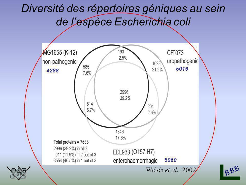 BBE Diversité des répertoires géniques au sein de lespèce Escherichia coli 4288 5016 5060 Welch et al., 2002