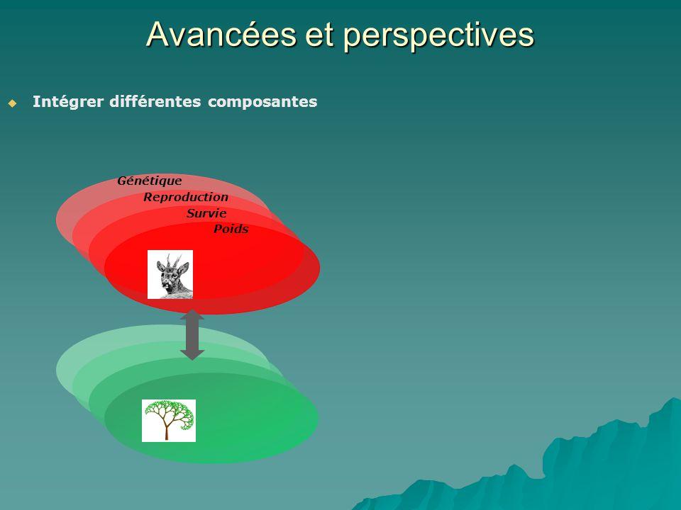 Avancées et perspectives Intégrer différentes composantes Poids Survie Reproduction Génétique
