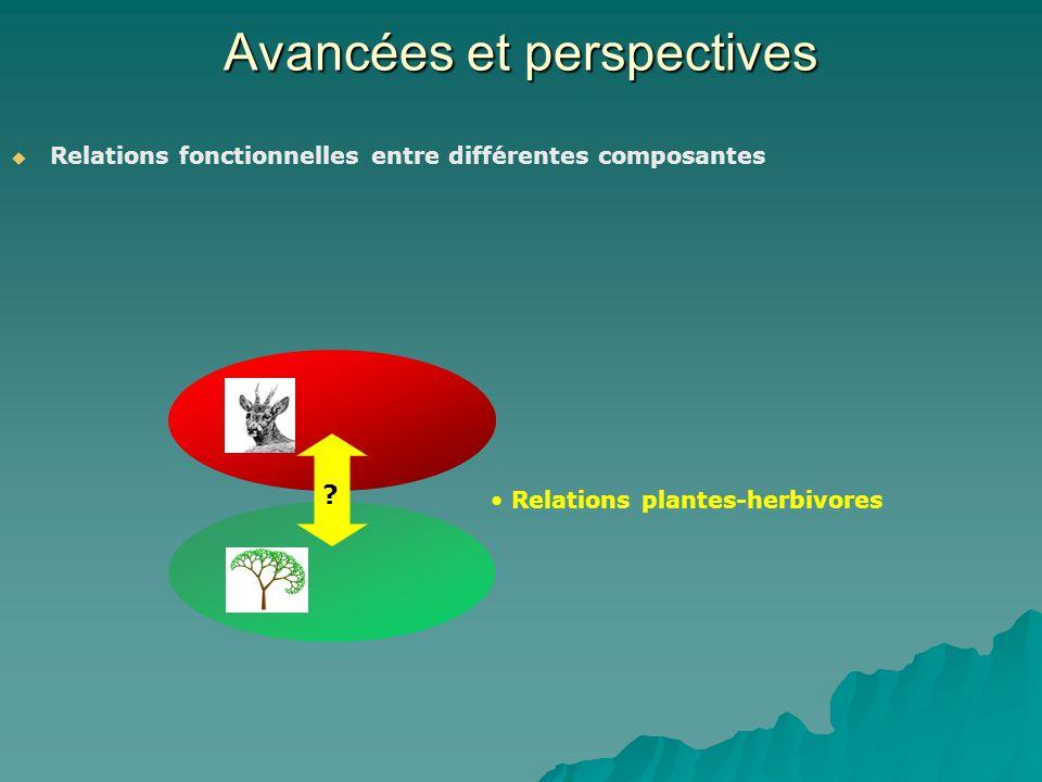 Avancées et perspectives Relations fonctionnelles entre différentes composantes ? Relations plantes-herbivores