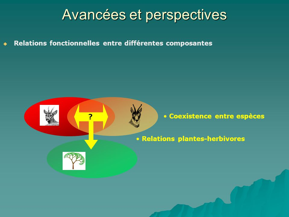 Avancées et perspectives Relations fonctionnelles entre différentes composantes ? Coexistence entre espèces Relations plantes-herbivores
