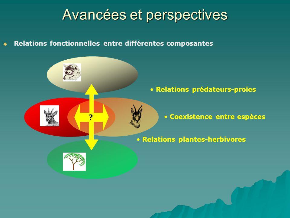 Avancées et perspectives Relations fonctionnelles entre différentes composantes Relations prédateurs-proies Coexistence entre espèces Relations plante