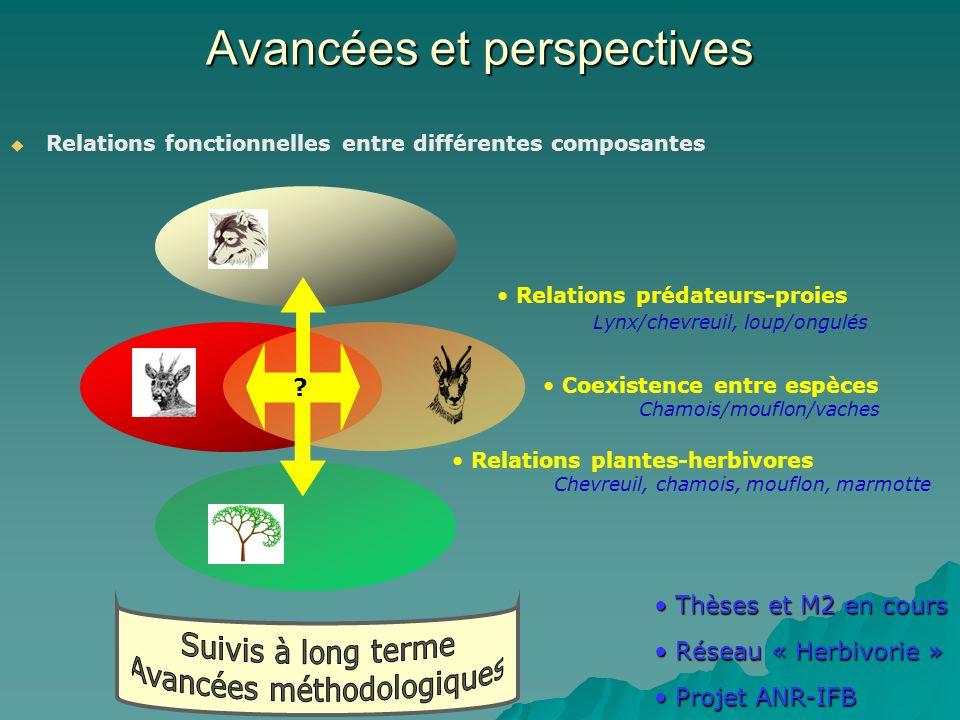 Avancées et perspectives Relations fonctionnelles entre différentes composantes Relations prédateurs-proies Lynx/chevreuil, loup/ongulés Coexistence entre espèces Chamois/mouflon/vaches Relations plantes-herbivores Chevreuil, chamois, mouflon, marmotte .