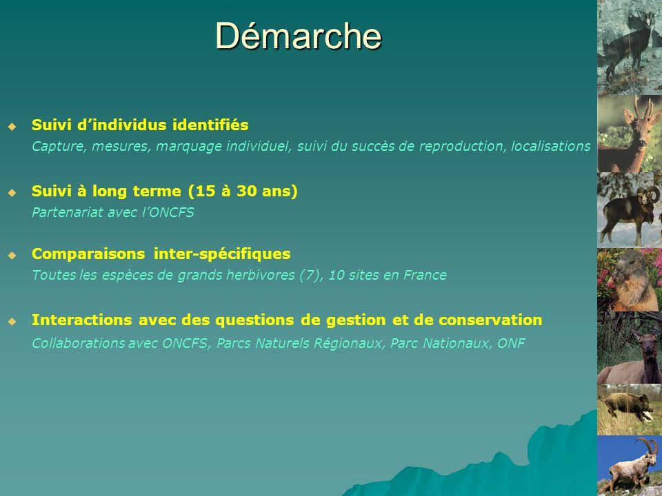 Démarche Suivi dindividus identifiés Capture, mesures, marquage individuel, suivi du succès de reproduction, localisations Suivi à long terme (15 à 30 ans) Partenariat avec lONCFS Comparaisons inter-spécifiques Toutes les espèces de grands herbivores (7), 10 sites en France Interactions avec des questions de gestion et de conservation Collaborations avec ONCFS, Parcs Naturels Régionaux, Parc Nationaux, ONF