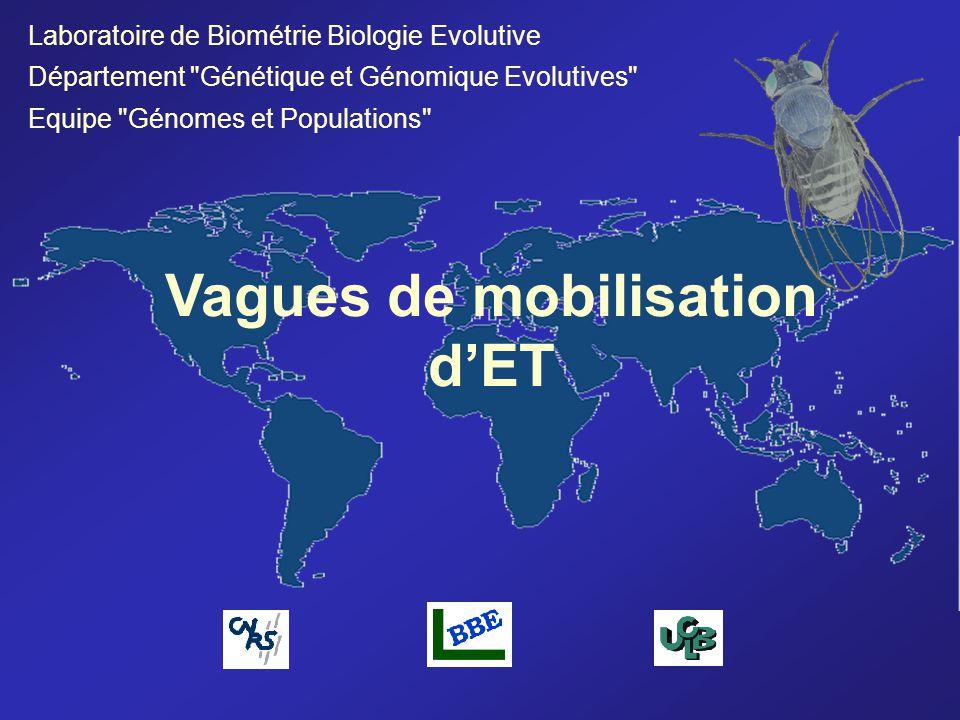 Vagues de mobilisation dET Laboratoire de Biométrie Biologie Evolutive Département