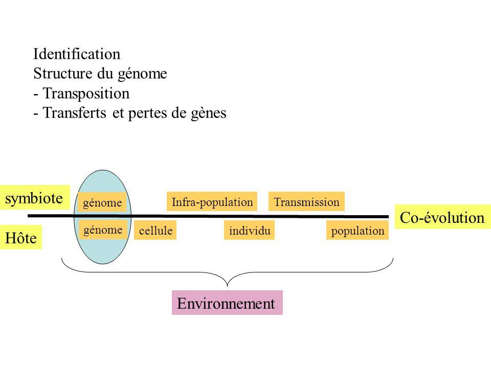 Identification Structure du génome - Transposition - Transferts et pertes de gènes Hôte symbiote Co-évolution celluleindividupopulation Infra-populati