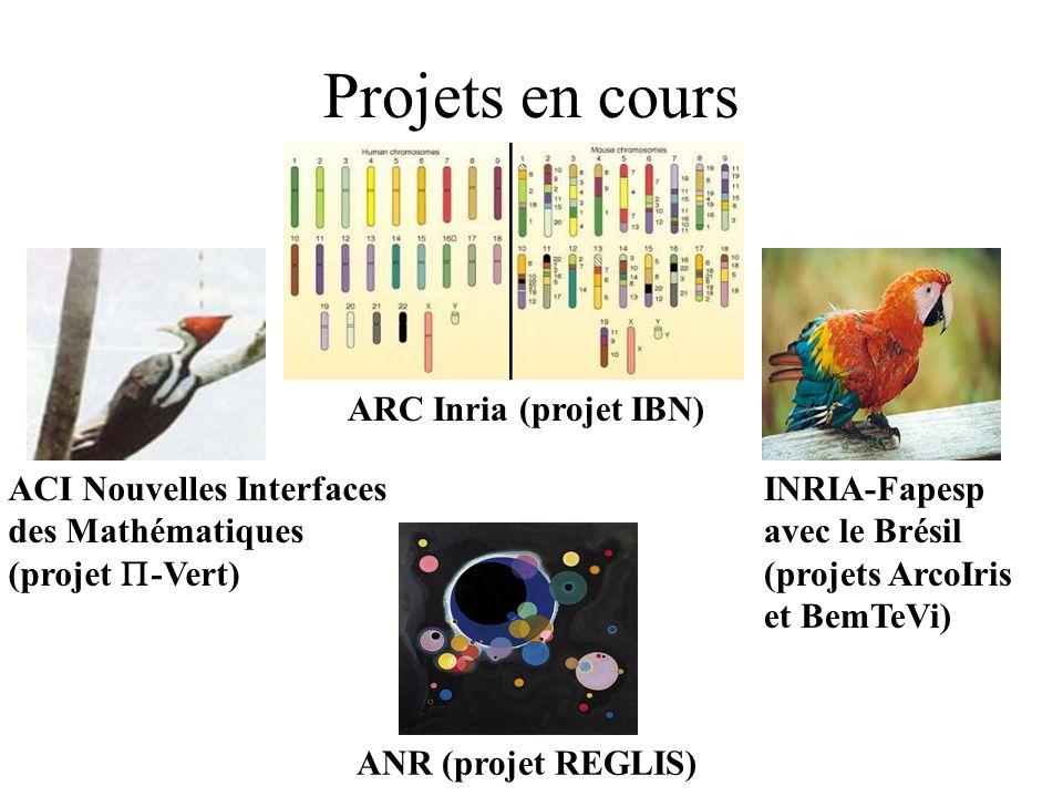 Projets en cours ACI Nouvelles Interfaces des Mathématiques (projet -Vert) ARC Inria (projet IBN) INRIA-Fapesp avec le Brésil (projets ArcoIris et BemTeVi) ANR (projet REGLIS)