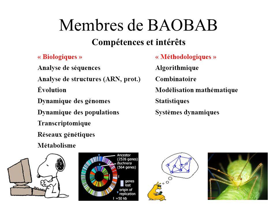 Membres de BAOBAB Compétences et intérêts « Biologiques »« Méthodologiques » Analyse de séquencesAlgorithmique Analyse de structures (ARN, prot.)Combi