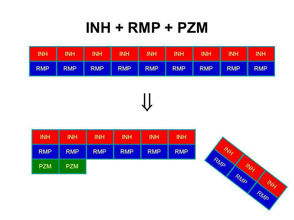 INH + RMP + PZM INH RMP INH RMP PZM INH RMP INH RMP INH RMP
