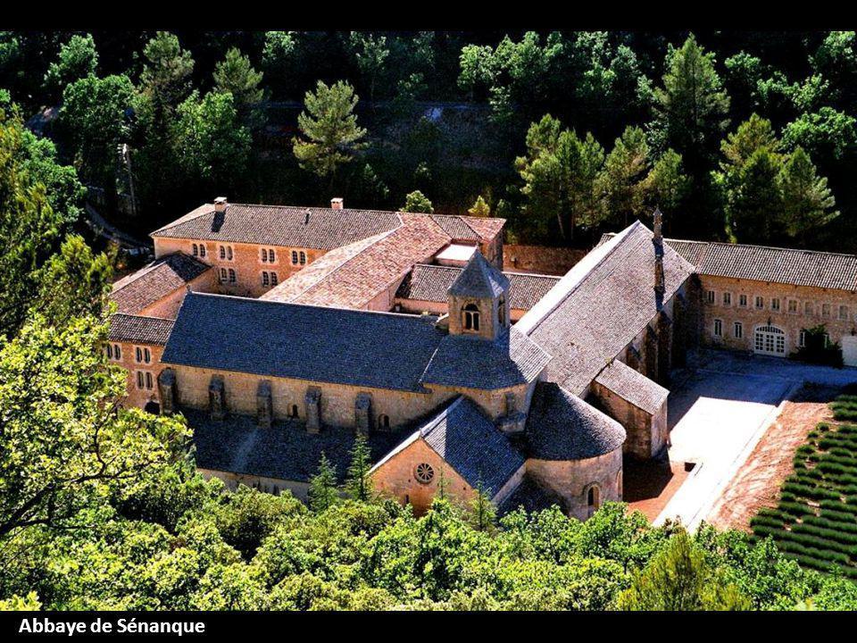 Abbaye de Sénanque Vaucluse