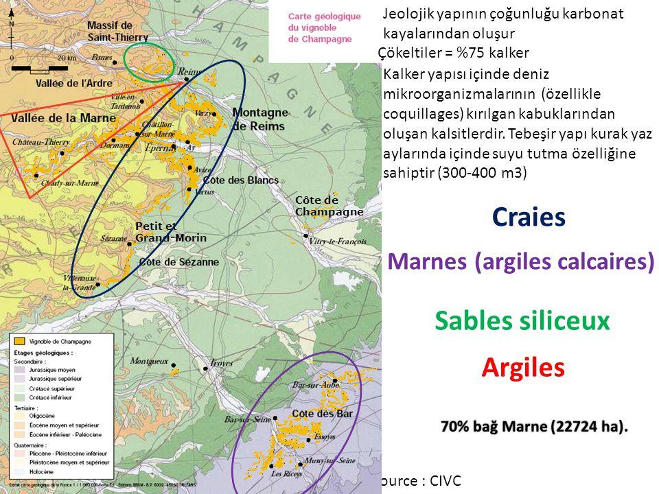 Source : CIVC Petit et Grand-Morin Côte de Champagne Jeolojik yapının çoğunluğu karbonat kayalarından oluşur Craies Marnes (argiles calcaires) Sables