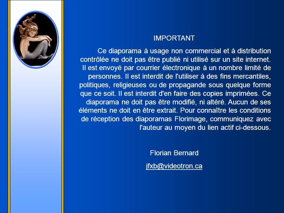 Estrellita - Juan Paco-Lopez Création Florian Bernard - 2004 Tous droits réservés – 2004 jfxb@videotron.ca